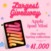 Apple iPad Mini and More
